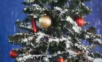 Германия встретит Рождество без снега? Скриншот Youtube