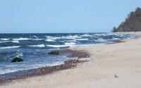 Сельское хозяйство Германии медленно «убивает» Балтийское море