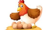 «Всемирный день яйца» в Германии