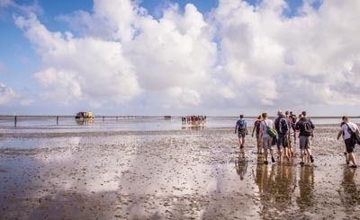 Ваттовое море © Jenny Sturm - Fotolia.com